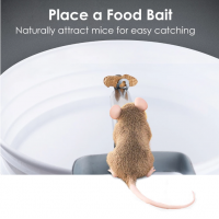 Rolling Log Mouse Trap Australia FREE POST