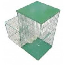 MINI MAGNET - Myna Bird Trap