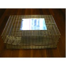 Cage Trap - Sparrow