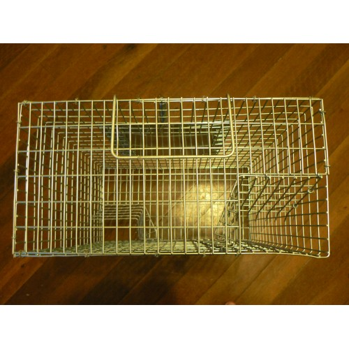 House Sparrow Trap House Sparrow Trap Plans