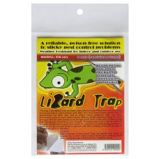 Lizard Trap - Non Toxic (3 Packs of 4)  - Ideal for geckos