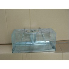 Mouse Trap Multi Catch - Large
