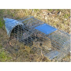 Cage Trap Folding - Medium FREE POSTAGE!