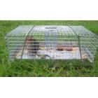 Mouse Trap Multi Catch - Small