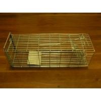 Cage Trap - Rat